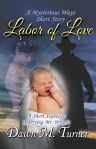 Cover image for Labor of Love