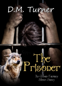 Cover image for THE PRISONER