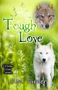 Cover image for TOUGH LOVE